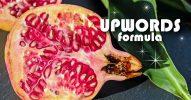 【UPWORDS】鮮明にイメージが伝わる効果的な文章の書き方