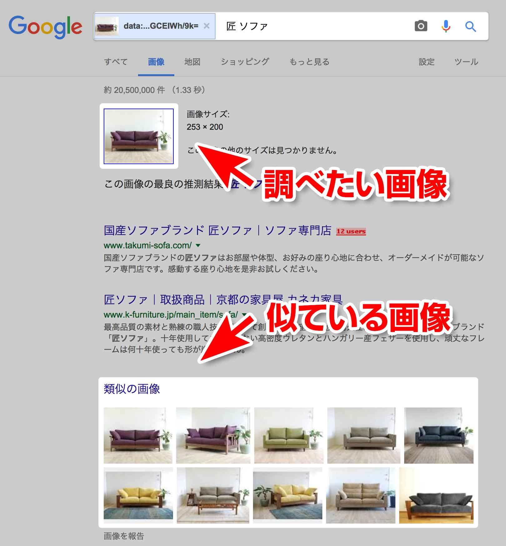 サイト上の似ている画像の検索結果